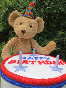 Teddy Bear and Cake